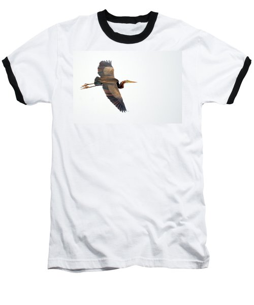 Purple Heron In Flight Baseball T-Shirt