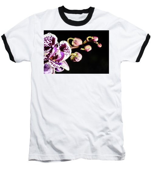 Purple Orchid Reaching Out Baseball T-Shirt