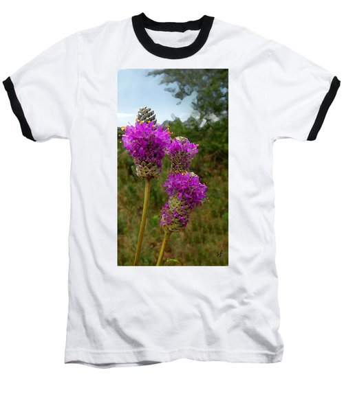 Purple Prairie Clover Baseball T-Shirt