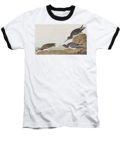 Purple Sandpiper Baseball T-Shirt