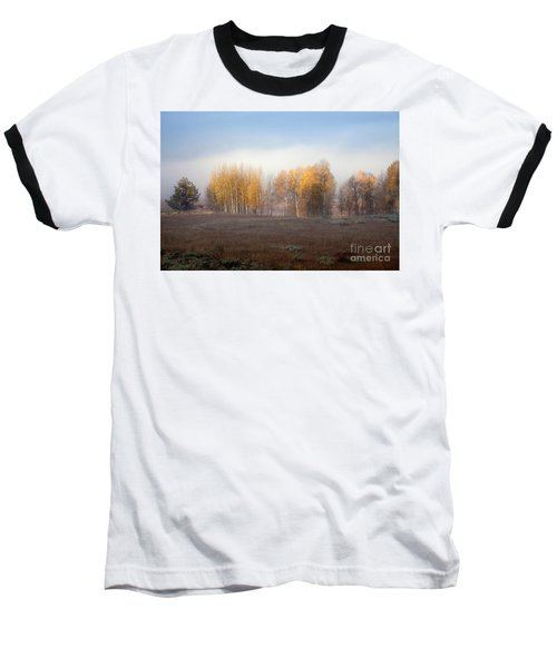Quaking Aspen Trees At Dawn, Grand Teton National Park, Wyoming Baseball T-Shirt