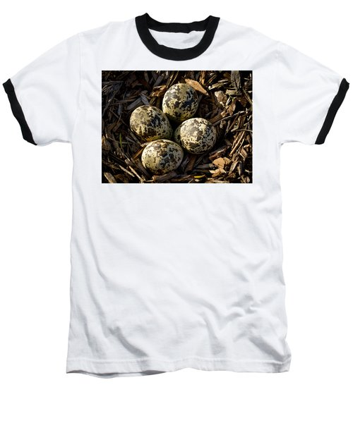 Quartet Of Killdeer Eggs By Jean Noren Baseball T-Shirt by Jean Noren
