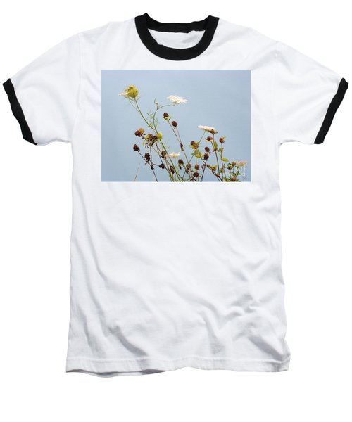 Queen Anne's Lace And Dried Clovers Baseball T-Shirt by Lise Winne