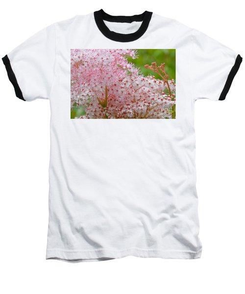 Queen Of The Prairie Nature Art Baseball T-Shirt