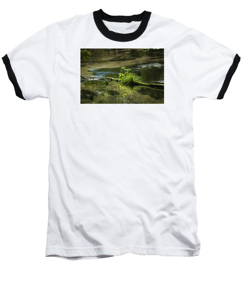 Quiet Trout Stream Baseball T-Shirt