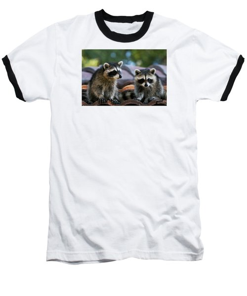 Racoons On The Roof Baseball T-Shirt by Dorothy Cunningham