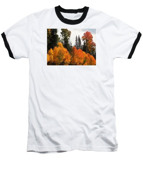 Radiant Autumnal Forest Baseball T-Shirt by Deborah Moen