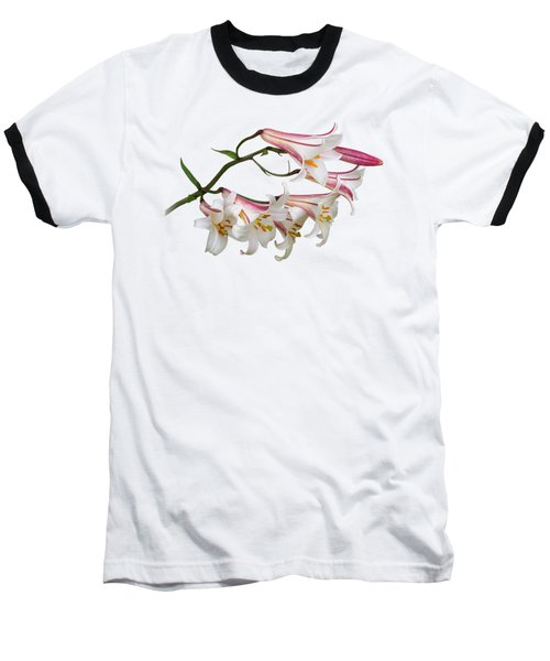 Radiant Lilies Baseball T-Shirt by Gill Billington