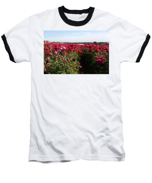 Ranunculus Field Baseball T-Shirt