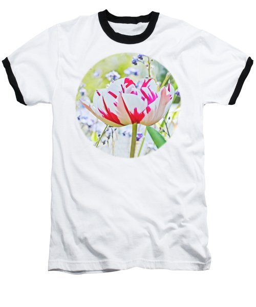 Red And White Tulip Baseball T-Shirt by Terri Waters
