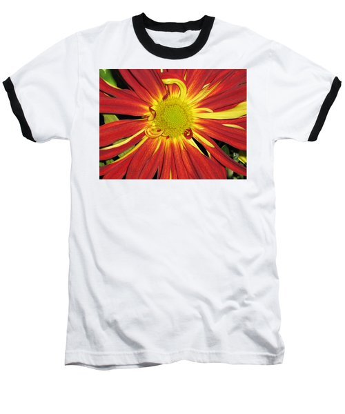 Red And Yellow Flower Baseball T-Shirt by Barbara Yearty