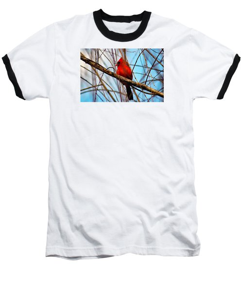 Red Bird Sitting Patiently Baseball T-Shirt