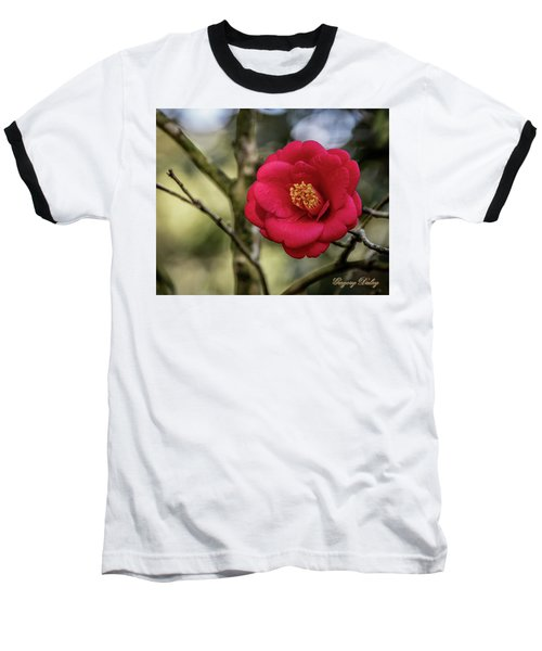 Red Camelia 05 Baseball T-Shirt by Gregory Daley  PPSA