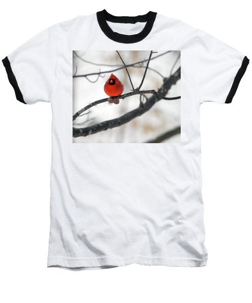 Baseball T-Shirt featuring the photograph Red Cardinal In Snow by Marie Hicks