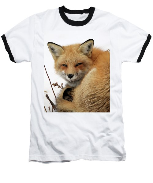 Baseball T-Shirt featuring the photograph Red Fox In Snow by Doris Potter
