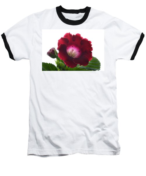 Red Gloxinia. Baseball T-Shirt by Terence Davis