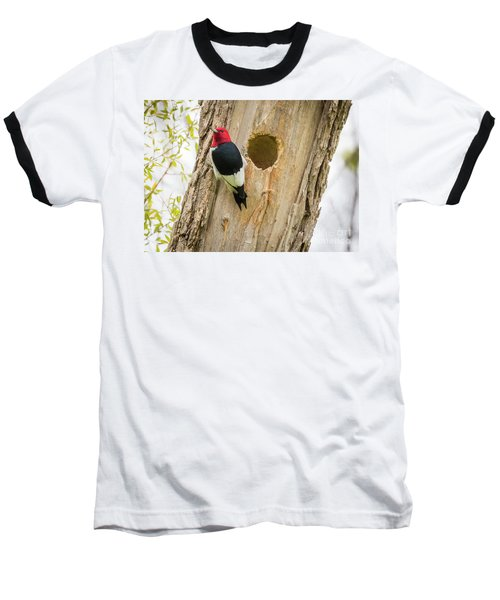 Red-headed Woodpecker At Home Baseball T-Shirt by Ricky L Jones