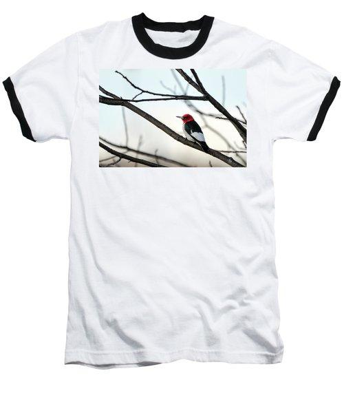 Red-headed Woodpecker Baseball T-Shirt