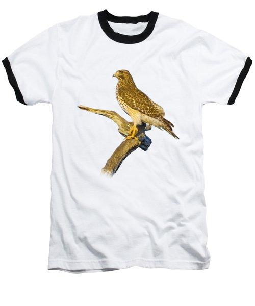 Red Shouldered Hawk Perch Baseball T-Shirt