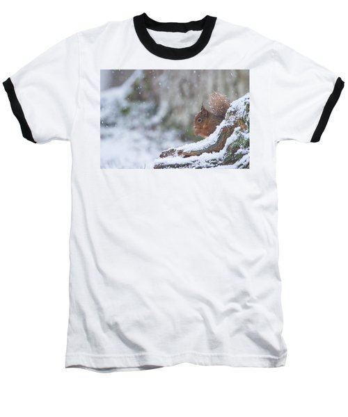 Red Squirrel On Snowy Stump Baseball T-Shirt
