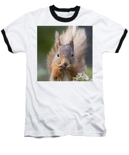 Red Squirrel - Scottish Highlands #28 Baseball T-Shirt