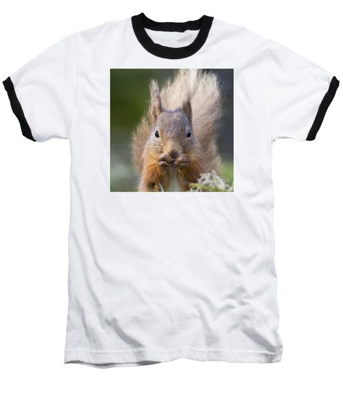 Red Squirrel - Scottish Highlands #28 Baseball T-Shirt