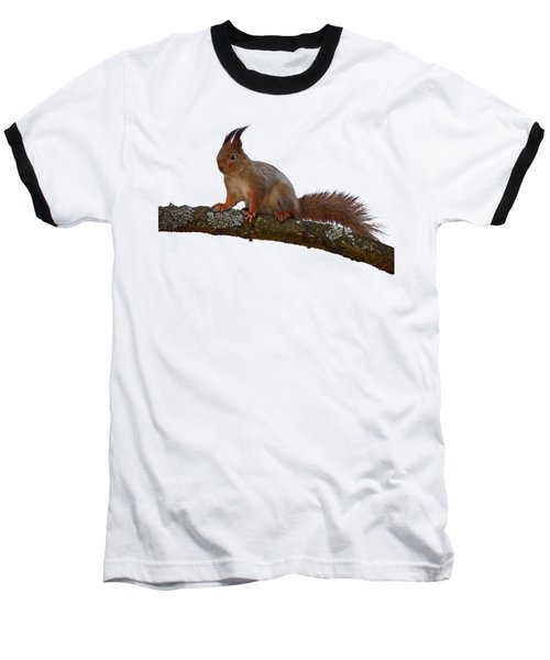 Red Squirrel Transparent Baseball T-Shirt