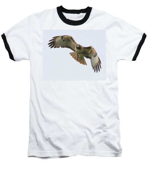 Red Tailed Hawk Finds Its Prey Baseball T-Shirt