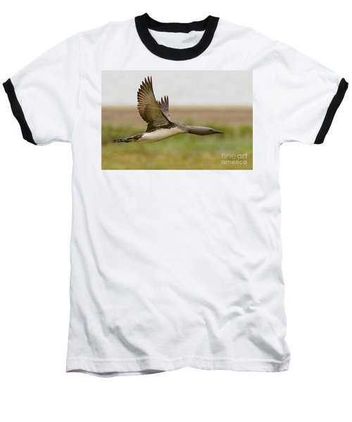 Red-throated Loon In Flight Baseball T-Shirt