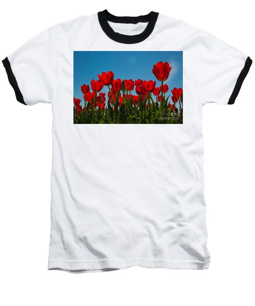Red Tulips Baseball T-Shirt