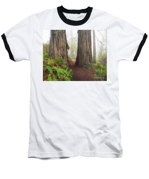 Redwood Trail Baseball T-Shirt