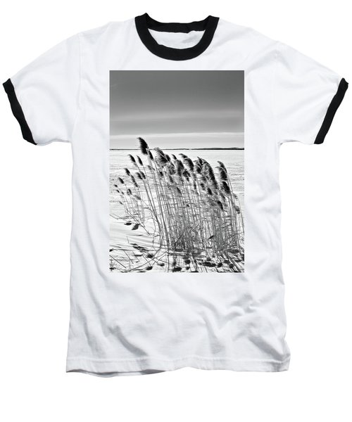 Reeds On A Frozen Lake Baseball T-Shirt