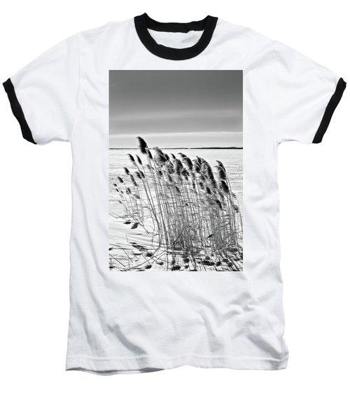 Reeds On A Frozen Lake Baseball T-Shirt