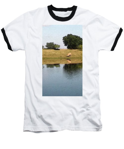 Baseball T-Shirt featuring the photograph Reflective Cow by Donna G Smith