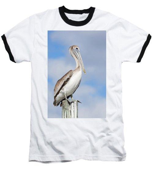 Regal Bird Baseball T-Shirt