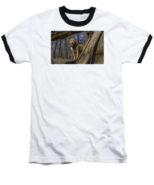 Remy In Tree Oil Paint More Pop Baseball T-Shirt