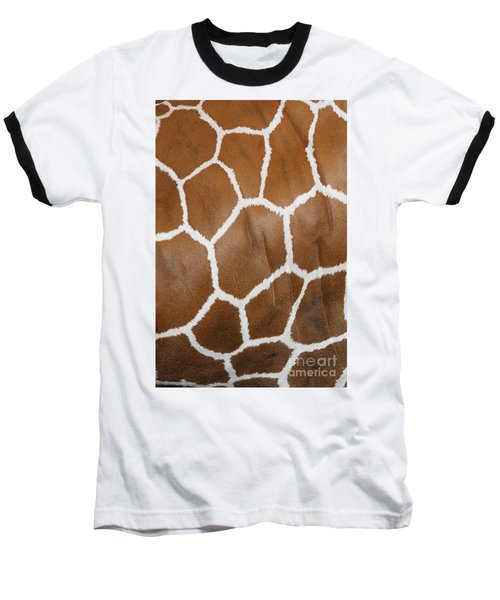 Reticulated Giraffe #2 Baseball T-Shirt