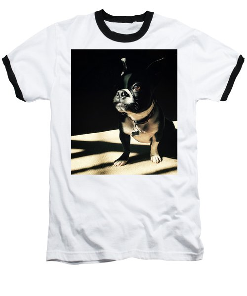 Rocky Baseball T-Shirt by Sharon Jones