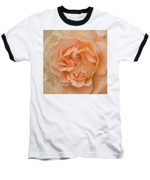 Romantic Rose Baseball T-Shirt by Jacqi Elmslie
