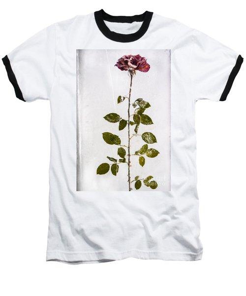Rose Frozen Inside Ice Baseball T-Shirt