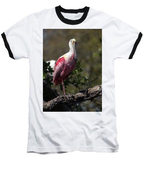 Roseate Spoonbill Baseball T-Shirt by Lamarre Labadie