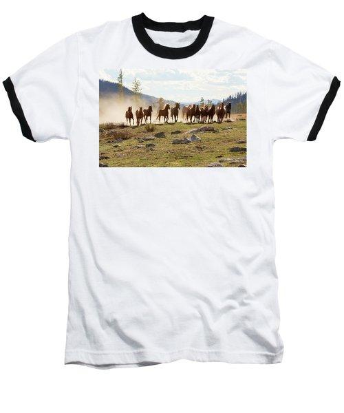 Round Up Baseball T-Shirt