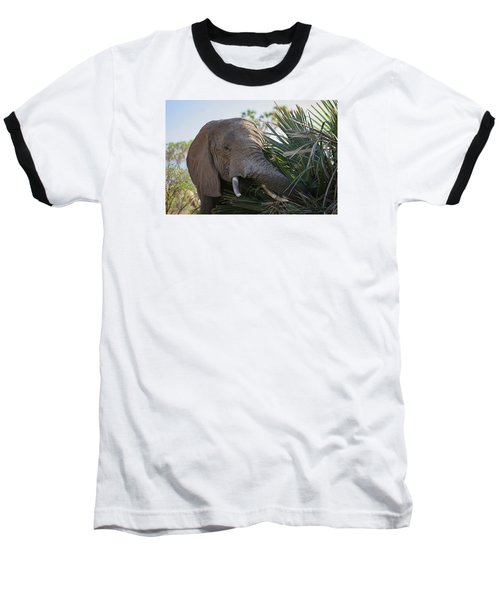 Samburu Elephant Baseball T-Shirt by Gary Hall