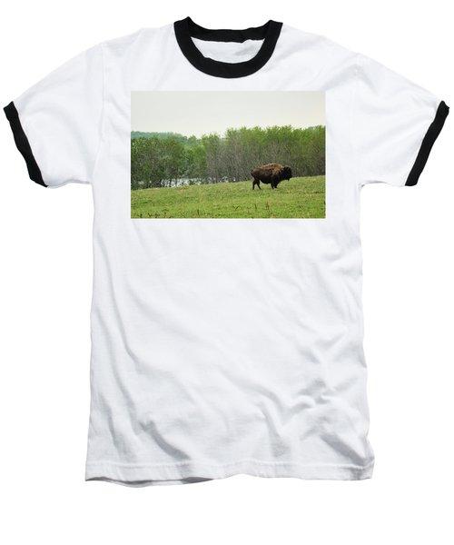 Baseball T-Shirt featuring the photograph Saskatchewan Buffalo by Ryan Crouse