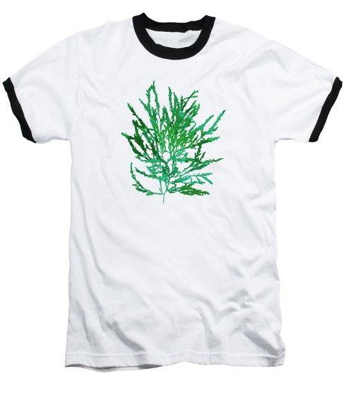 Baseball T-Shirt featuring the mixed media Sea Green Seaweed Art Odonthalia Dentata by Christina Rollo