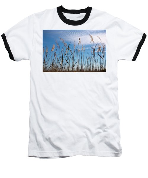 Baseball T-Shirt featuring the photograph Sea Oats And Sky On Outer Banks by Dan Carmichael