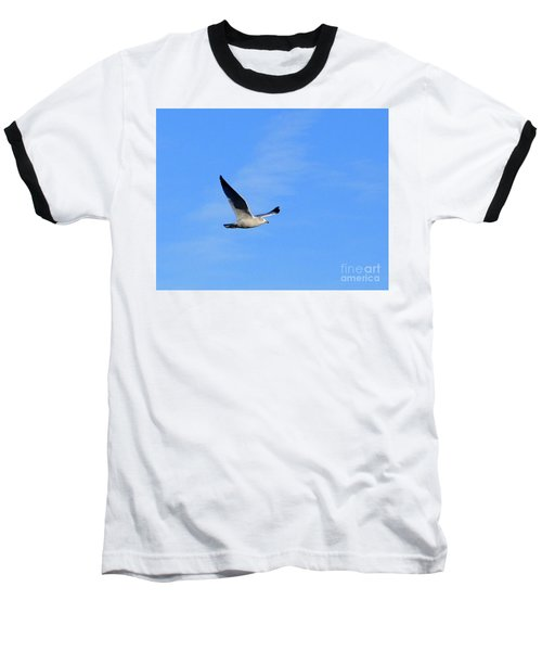 Seagull In Flight Baseball T-Shirt