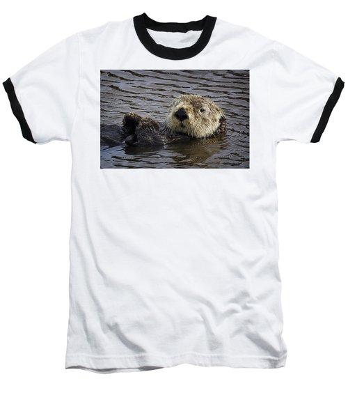 See Otter Posing Baseball T-Shirt