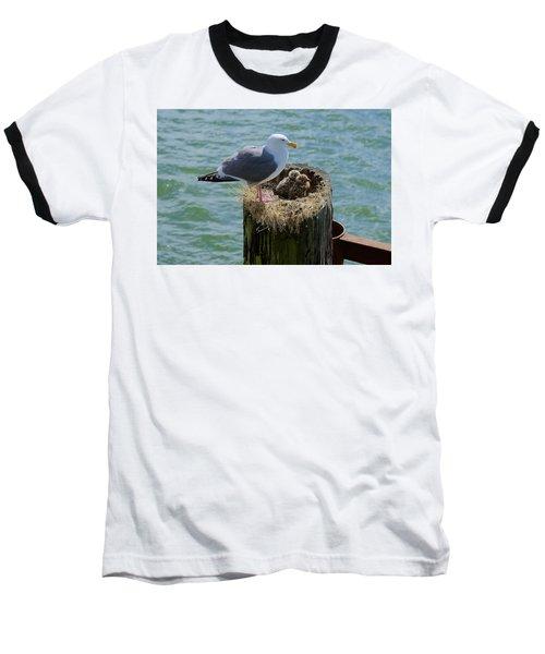 Seagull Family Baseball T-Shirt