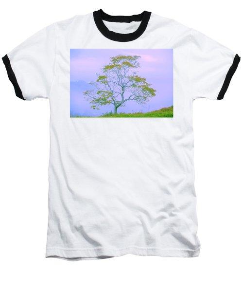 Shepherd Of The Valley Baseball T-Shirt by Az Jackson